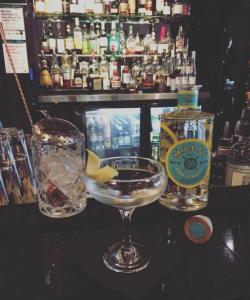Malfy Gin Martini (1)